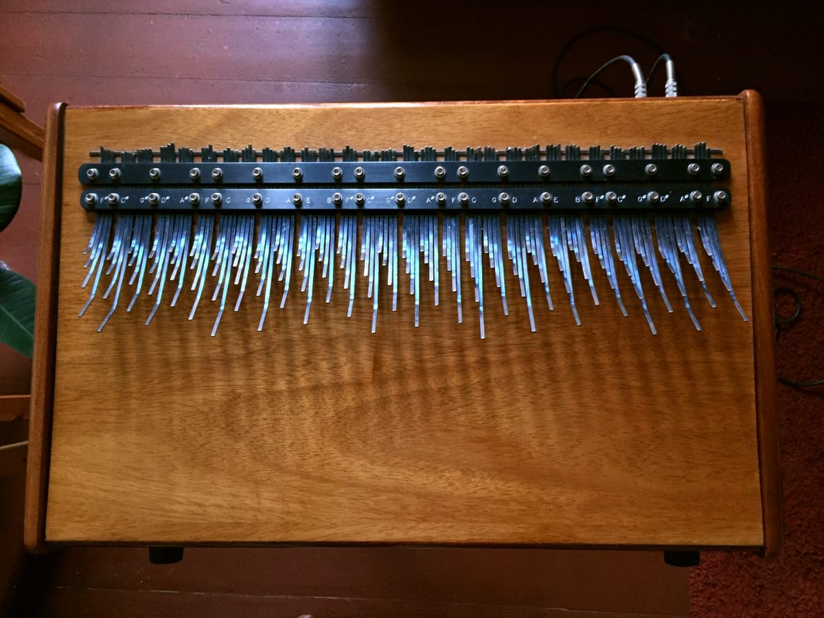 My array mbira